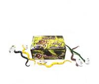 Набор змей (коробка, 48шт) Y19 р.24,5*19*9см. *
