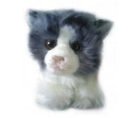 Fancy. Кошка Нюрка. FJC-202GB