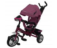 Велосипед трехколесный TILLY STORM T-349 Фиолетовый /1/