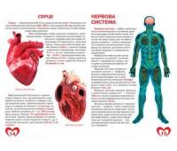 Анатомія людини, Велика книжка, Кристалл Бук