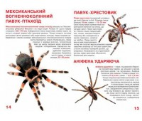 Павуки, Велика книжка, Кристалл Бук